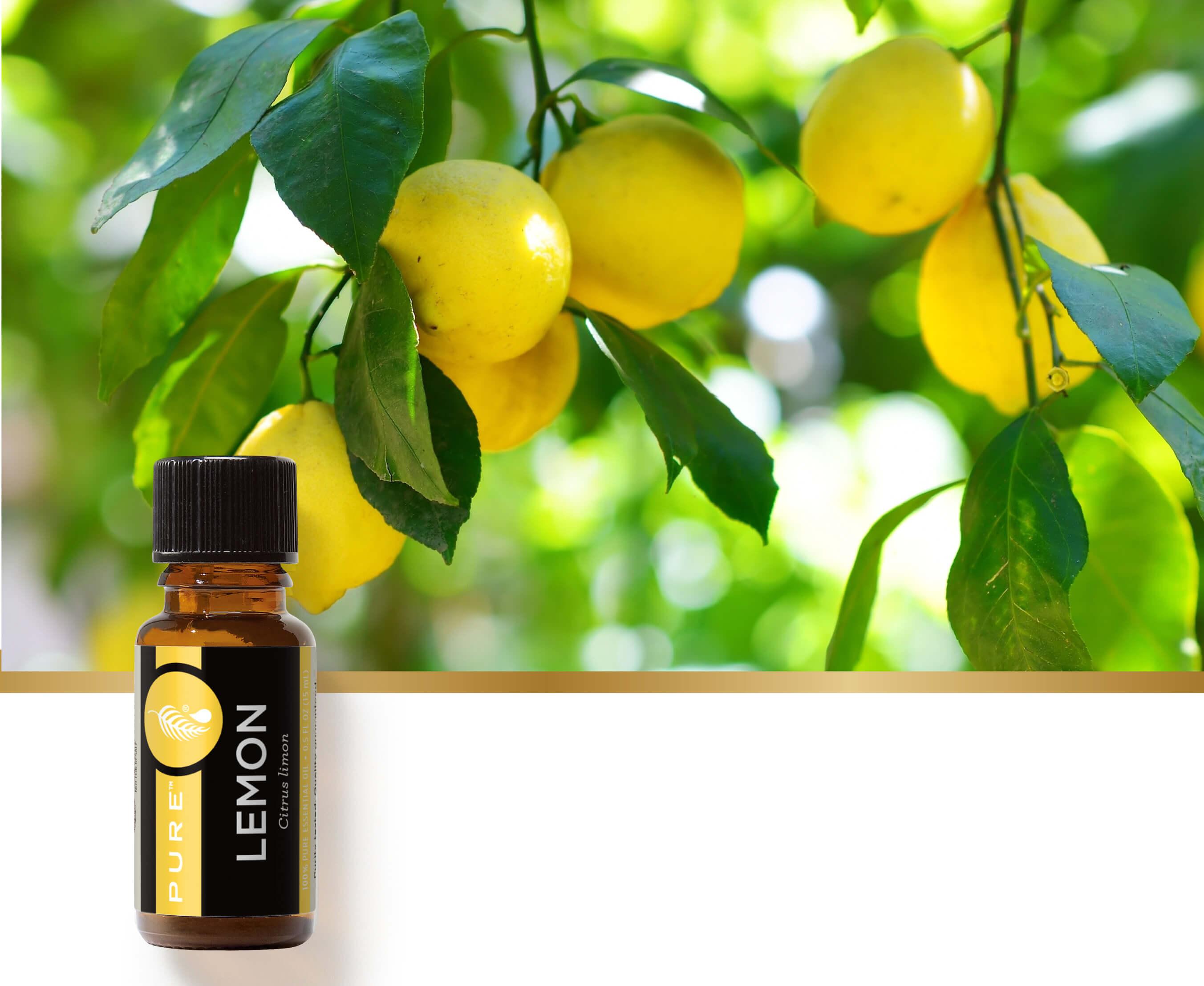 美樂家純質檸檬精油調和配方,打造屬於你的清新花園