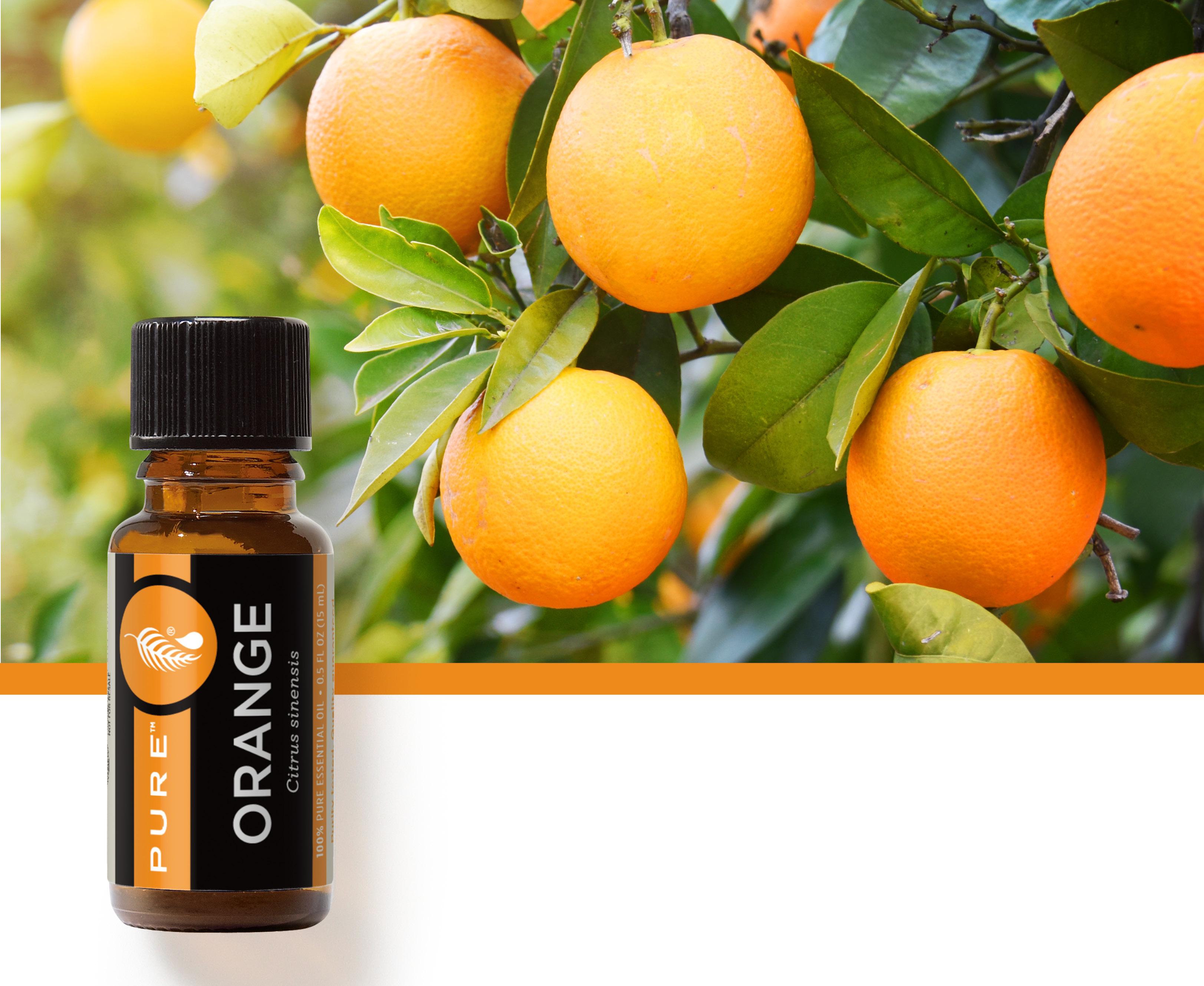 美樂家純質甜橙精油,為你帶來活力與愉悅的一天
